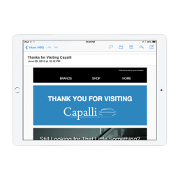 Capalli Dealership Email App
