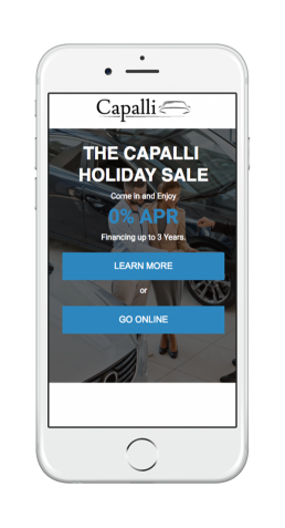 Capalli Dealership Access Journey 1