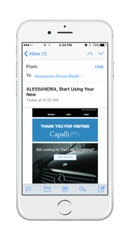 Capalli Dealership Access Journey 4